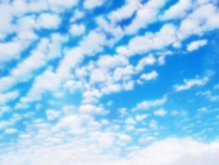 秋空 うろこ雲