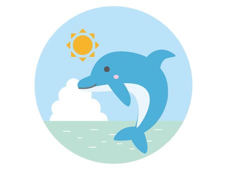돌고래와 바다