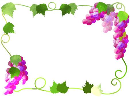 Grape frame 1
