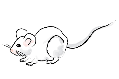Brush-style mouse 01