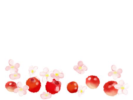 蘋果公主7