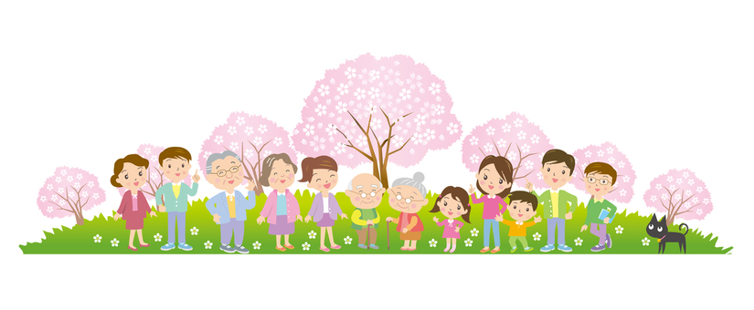 People who enjoy cherry blossoms without background