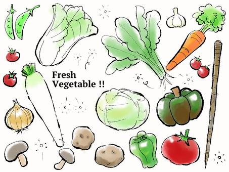 野菜セット【改訂版】