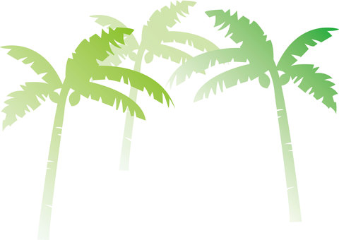 Palm's forest