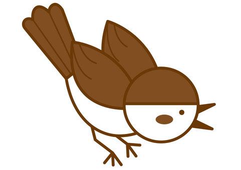 Finch 4c