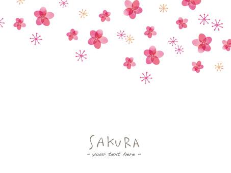 벚꽃 프레임 ver44