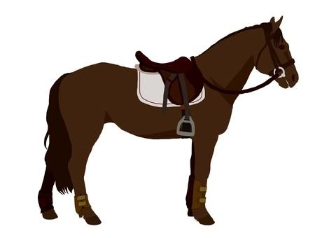 Barrier horse riding (black deer hair)