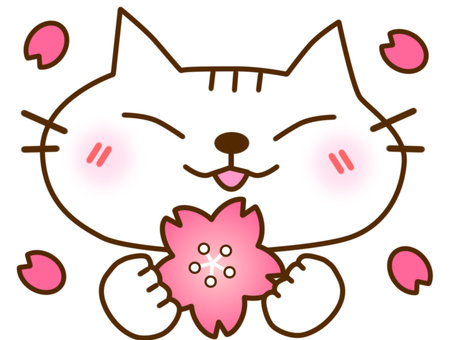 벚꽃과 흰색 고양이