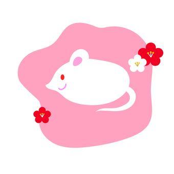 쥐와 매화 핑크