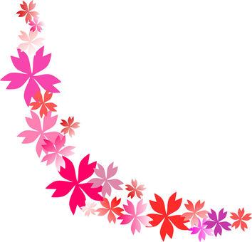 벚꽃 곡선