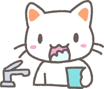 Gargle cat