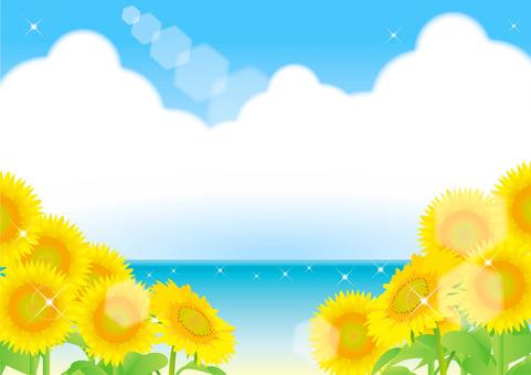 해바라기와 여름 빈 프레임