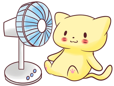 Cat and electric fan