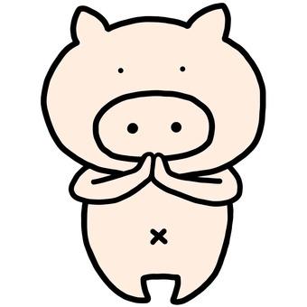 돼지 21