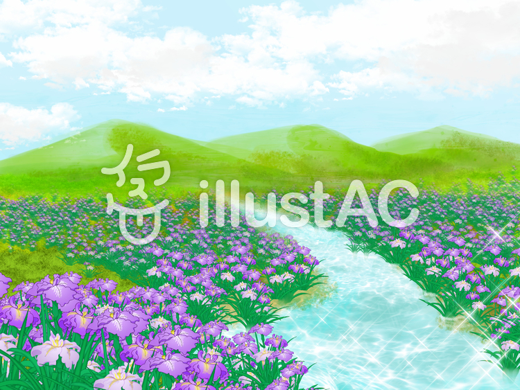菖蒲の遠景のイラスト