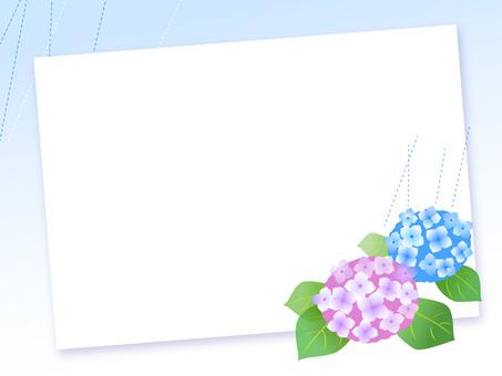 16.板系列繡球2
