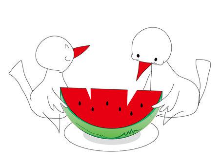 Little bird and watermelon