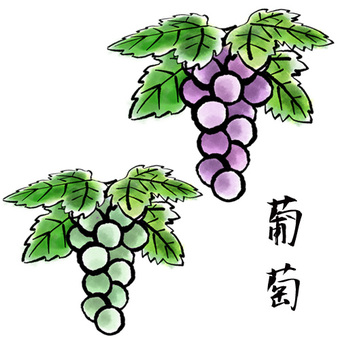 Parts picture letter-like grape