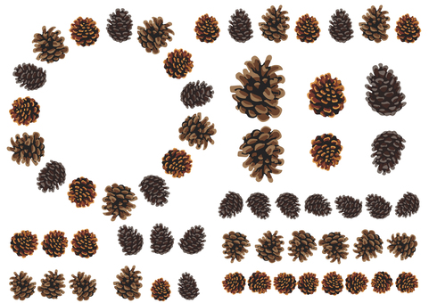 Pine cone parts