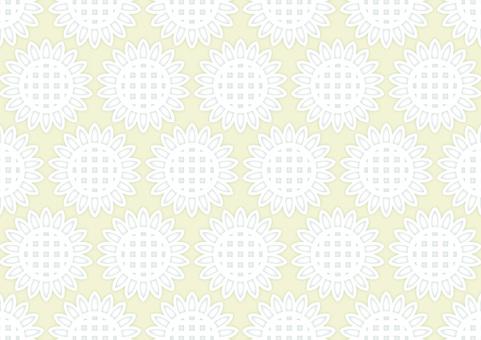 Wallpaper Wind · White Sunflower