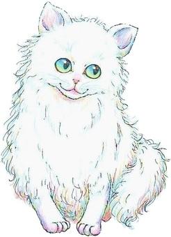 White cat 2