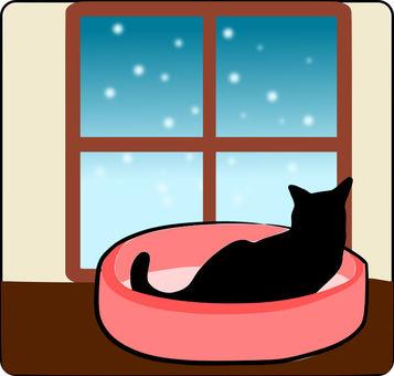 Nyanko and snow scenery