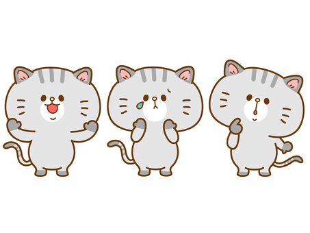 Cat with various expressions