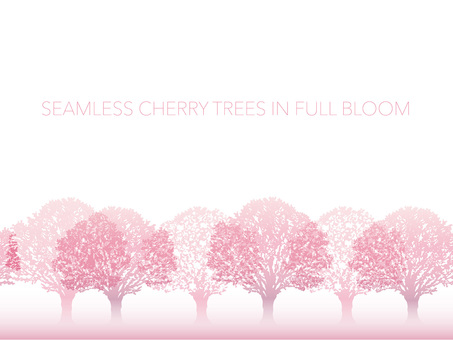 원활한 만개의 벚꽃길