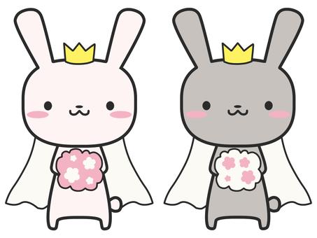 토끼 결혼 동성