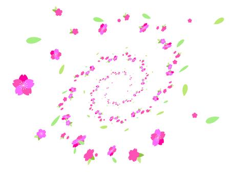 소용돌이 벚꽃의 꽃잎 배경