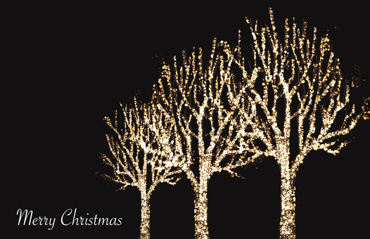 Illuminations of street trees 2