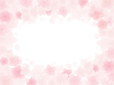 Sakura Frame 5