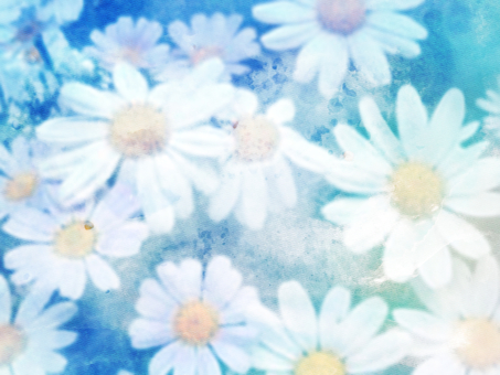 White flowers (blue)