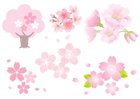 櫻花材料9