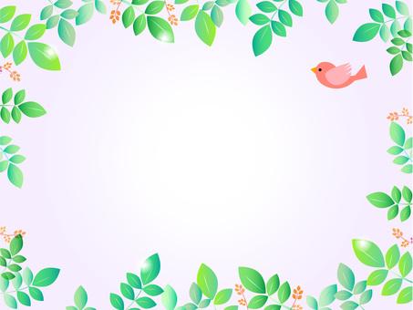 綠色和飛鳥1-2