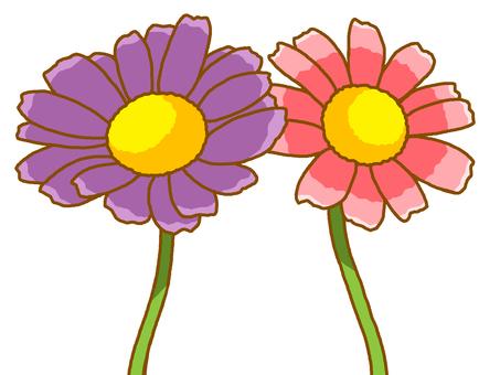 Cuddling flowers