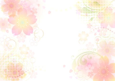 Cherry blossoms 56