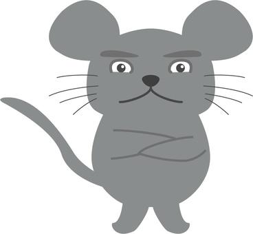 喜怒無常的老鼠