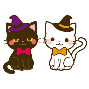 Halloween white cat & black cat