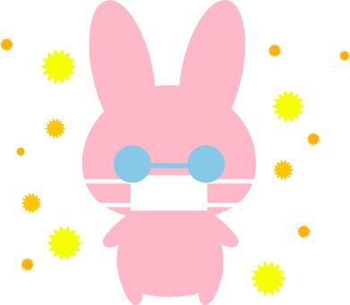Pollen allergy rabbit