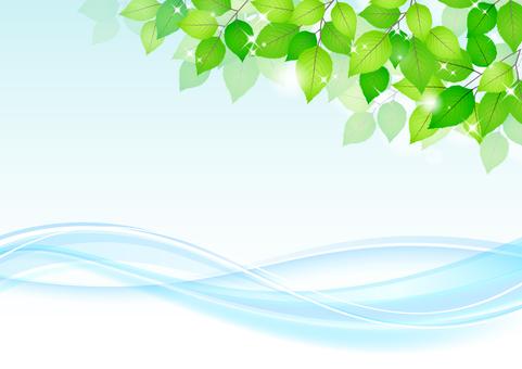 Fresh green material 240