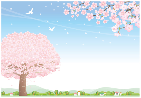 Seasonal wind scenery where cherry blossom petals fly