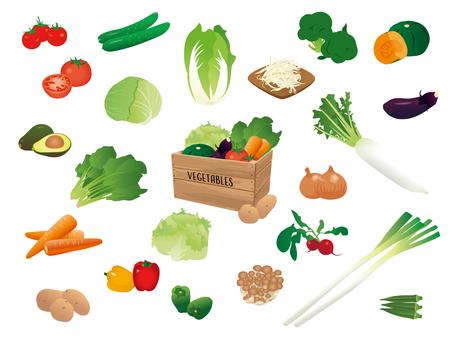 Food / Vegetables
