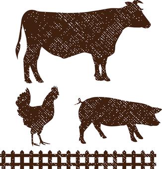 Bovine porpoise