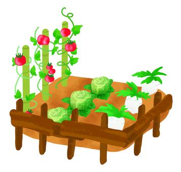 Making vegetables
