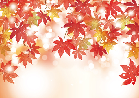 Autumn leaves maple glitter round bokeh background