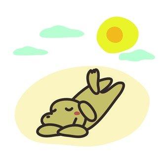 Sunbust