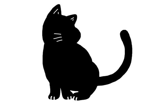 Cat animal monotone black