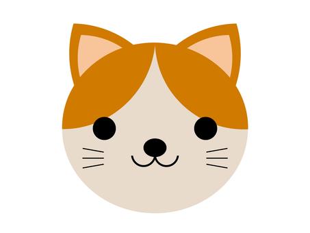 동물 고양이 고양이 애완 동물