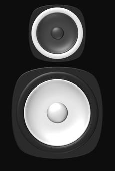 Speaker ④